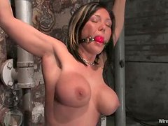 Brunette milf gets tormented and fucked by two lewd mistresses