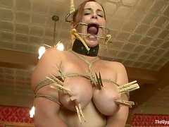 Kinky blondes gets her big boobs clothespinned