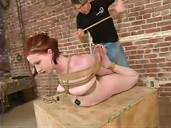 SOme wild act of sadism towards a slutty slave Claire Adams