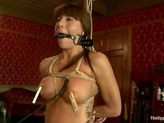 Tied up brunette sucks a dildo and gets her pussy gaped