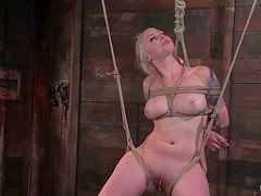Lorelei Lee gets tied up and tormented in a basement