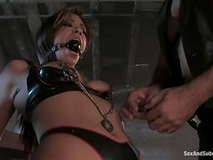 Divine babe gets tied up on the bar and fucked from behind