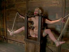 Tara Lynn Foxx gets her holes fucked hard with toys in BDSM clip
