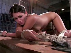 Jade Indica gets pinched and pulled by the nipples in BDSm scene