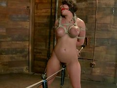 Tanned Charley Chase gets bonded and then toyed