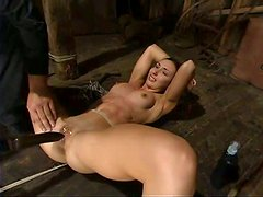 Slender honey Wenona is hogtied with a ball gag in her mouth