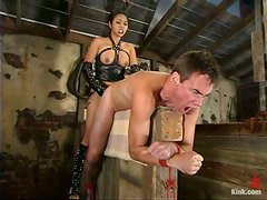Mika Tan in Wild Female Domination Action in Bondage vid with Pegging