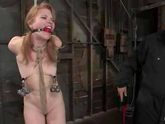 Horny blond angel Madison is being treated pretty bad