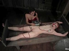 A lot of sexual violence in just one BDSM video
