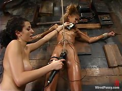 Sexy Exotic Chick Getting Tortured in Wild Lesbian Bondage Video