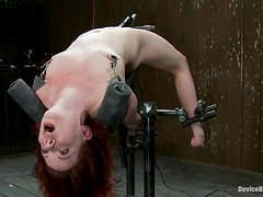 Redhead slut Lilla Katt gets tortured and fucked with a toy