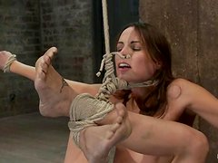 Amber Rayne gets suspended and enjoys having a toy in her vag