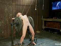 Busty blonde Madison Scott gets tortured in a cellar and enjoys it