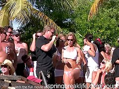 Pool Party Wet T Shirt Contest