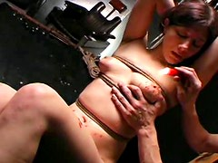 Busty and shy brunette is doing deep blowjob