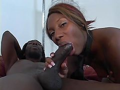 Black-Booty Rides A Huge-Cock - Pure Filth Productions