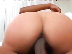 Big titted MILF introduces her pussy to a big black nob