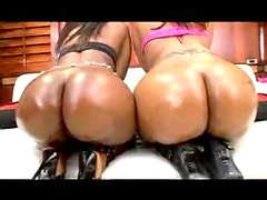 Big jiggling black butts oiled up