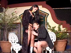 Hot tranny Adriana D gets naughty with a guy in the bathroom