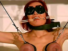 Major tit pain for BDSM sub slut