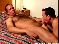 Hot bear blown and sucking on rod in hotel