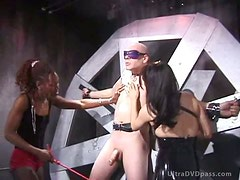 Cruel Dominatrix Give Ball and Nipple Torture To Blindfolded Submissive Male