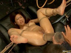 Dildo Fuck For Bondaged Asian