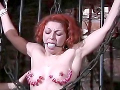 Big ass redhead in for BDSM pain