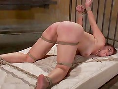 Bondage BDSM fetish bitch spanked harsh