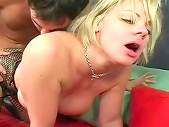 Blonde in fabulous fishnets fucked hardcore