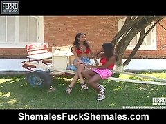 Rochele and Marcela beautiful trannies onto movie