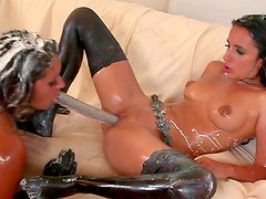 Tempting and hot lesbian Connie Berry is fucking her babes cave