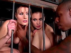 Daryl and Johane Johansson being spanked by black cock