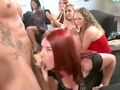 Party transforms into amazing cock-sucking competition