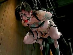 Blue eyed, huge tits, tattooed fantasy slut Kathryn submits to bizarre leather encasement bondage, suspension, wicked intense orgasms, and pain.