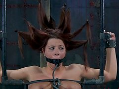 Rich breasted redhead mom Sarah Blake in hardcore BDSM session