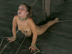 Flexible slave Remy LaCroix gets fixed with ropes on the floor