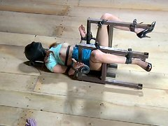 Beautiful mistress punishes her bitch Calico in dirty BDSM way