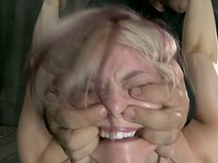 Hogtied bitch Ash Hollywood gets her quim drilled doggy tough