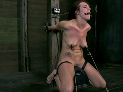 Beautiful brunette Alisha Adams has her tongue squeezed and nipples tied and pulled