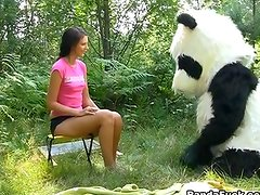 Xxx in the woods nearly A huge toy panda